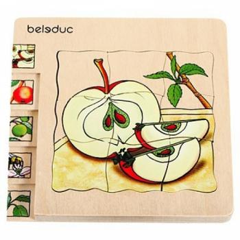 Детская развивающая игра Многослойный пазл «Как растет яблоко» арт. 17039